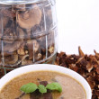 Mushroom soup and dried mushrooms — Stock Photo #5158994