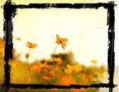 Gamla blomma papper texturer — Stockfoto