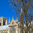Notre Dame Cathedral — Stock Photo #4664182