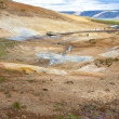 Geothermal area, colorful landscape - Iceland. — Foto de Stock