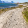 Country gravel route - Iceland — Stock Photo #4296678
