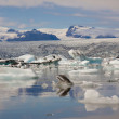 Jokulsarlon lake - Iceland. Summer day. — Foto de Stock