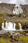 Dynjandi waterfall - Iceland — ストック写真