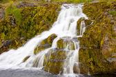 Small part of Dynjandi waterfall - Iceland — Stock Photo