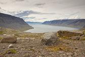 Dynjandisvogur fjord - Iceland. — Stock Photo