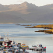 Fishing harbor - Djupivogur — Stock Photo