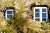 Two typical windows - Iceland — Stock Photo
