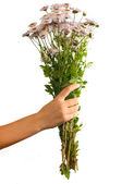 Arm of girl giving bouquet — Stock Photo