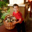 Stock Photo: Small boy, mushroom picker