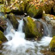 Falls on the small mountain river in a wood shooted in autumn — Stock Photo #4138533