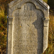 Detail of tomb on forgotten and unkempt Jewish cemetery with strangers — ストック写真 #4275353