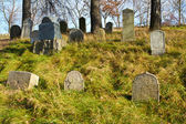Forgotten and unkempt Jewish cemetery with the strangers — ストック写真