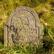 Detail of tomb on forgotten and unkempt Jewish cemetery with the strangers — Стоковая фотография