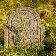 Detail of tomb on forgotten and unkempt Jewish cemetery with the strangers — Stock Photo