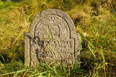 Detail of tomb on forgotten and unkempt Jewish cemetery with the strangers — Foto de Stock