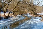 Sunny day in winter landscape — Stock Photo