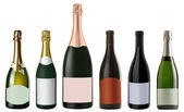 Set of bottles red and white Champagne — Stock Photo