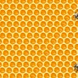 Worker Bees on Honeycomb — Stock Photo #4842520