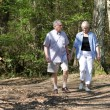 Royalty-Free Stock Photo: Senior couple strolling through the park