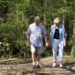 Senior couple strolling through the park - Stock Photo
