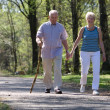 Senior couple strolling through the park — ストック写真