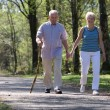 Senior couple strolling through the park — Stok fotoğraf