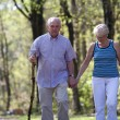 Senior couple strolling through the park — Stock Photo