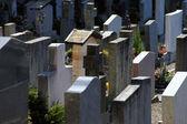 Friedhof - Graveyard — Stock Photo