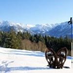Schneeschuh-Wanderung — Stock Photo #4627482