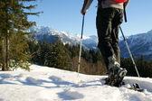 Schneeschuh-Tour — Stockfoto
