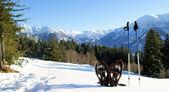 Schneeschuh-wanderung — Стоковое фото