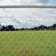 Stock Photo: Behind goal