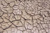 Clay dry soil — Stock Photo