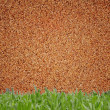 Sand wall and grass background — Stock Photo