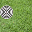 Target on green grass — Stock Photo