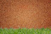 Mur de sable et de fond d'herbe — Photo