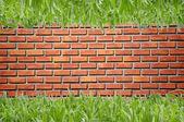 Brickwall vzor a zelená tráva — Stock fotografie