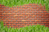 Brickwall and curve grass — Stock Photo