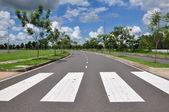 Zebra traffic walk way — Zdjęcie stockowe