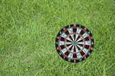 Goal on green grass — Stock Photo
