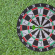 Dart Board on green grass background — Stock Photo