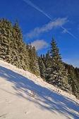 冬季山坡. — 图库照片