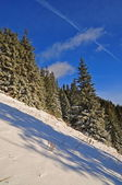 Colline d'hiver. — Photo