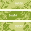 Stock Vector: Green leaf banner set
