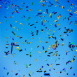 Confetti celebration - Stock Photo