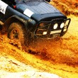 Off roading thrill — Stock Photo
