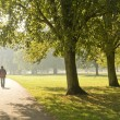 Man walking in the park — Stock Photo