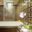 图库照片: Interior of bathroom
