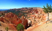 Bryce Canyon Np — Photo