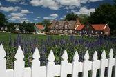 Dutch village — Стоковое фото